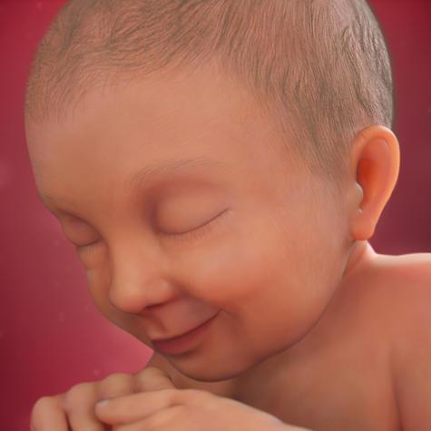 Ngày sinh của bạn đã rất gần và em bé cũng đã sắn sàng để ra đời.