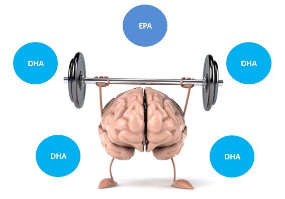Bổ sung DHA và EPA giúp con thông minh hơn.